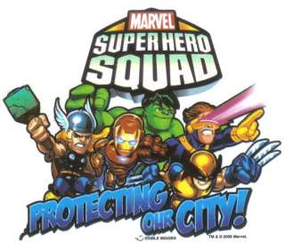 SUPER HERO SQUAD TEAMWORK Edible Image® CAKE DECOR