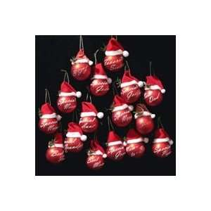 Club Pack of 144 Special Family Red Glass Ball Christmas Ornaments 2