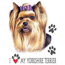 YORKIE yorkshire terrier fabric panel & paws panel