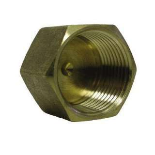 Watts 1/2 In. Brass Pipe Cap A 819