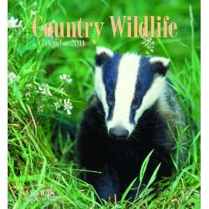 2011 Animal Calendars Country Wildlife   12 Month   22